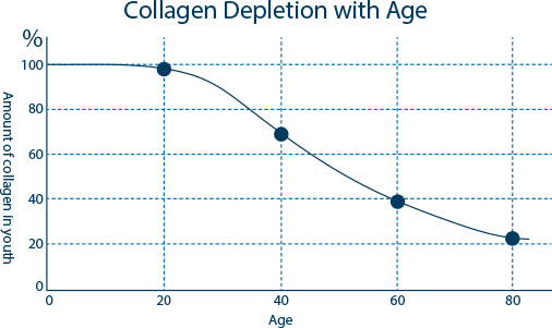 Graph of Collagen Amount in Youth vs Age