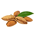 image of Sweet Almond Oil